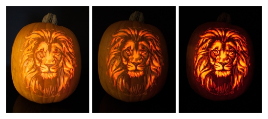 lion-carving-illuminated